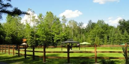 Grand parc à chien - été