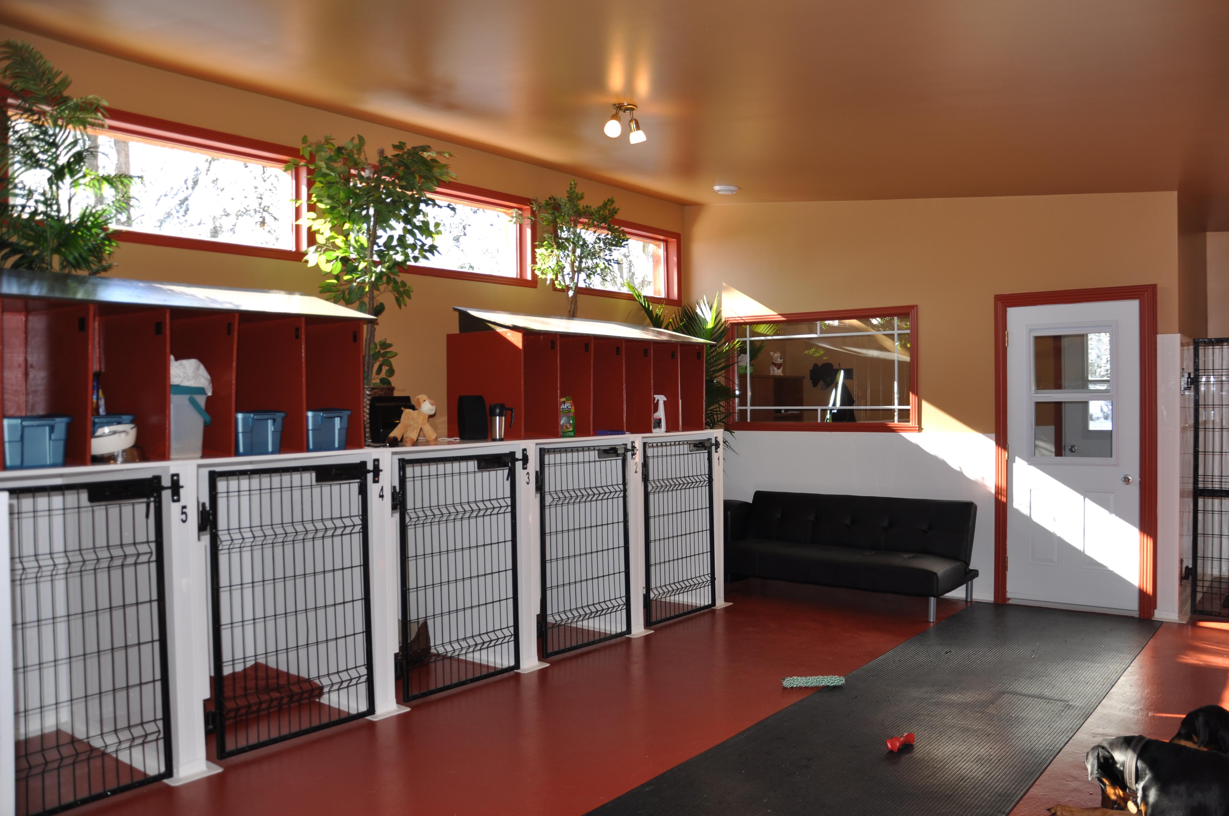 services pension au confort canin. Black Bedroom Furniture Sets. Home Design Ideas